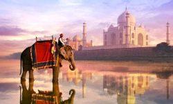 Горящие туры в Индию (ГОА)☀☀☀ ✈✈✈Вылет из Казани 08.11 на 10 дней
