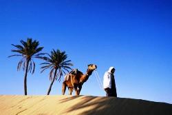 Тунис из Нижнекамска на 12 дней